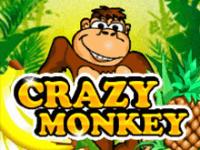 Автомат с бонусами Crazy Monkey