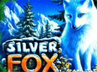 Играйте с бонусом в Silver Fox