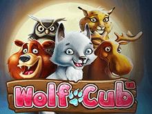Wolf Cub аппарат с виртуальными баллами и реальными выплатами