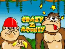 Автомат Crazy Monkey 2 с бонусом
