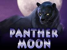 Игровые автоматы на деньги Panther Moon